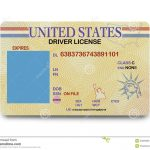 Blank Driver License Stock Photo. Image Of Current, Blank   43920380   Free Printable Fake Drivers License