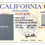 California Drivers License Template | California | Drivers License   Free Printable Fake Drivers License
