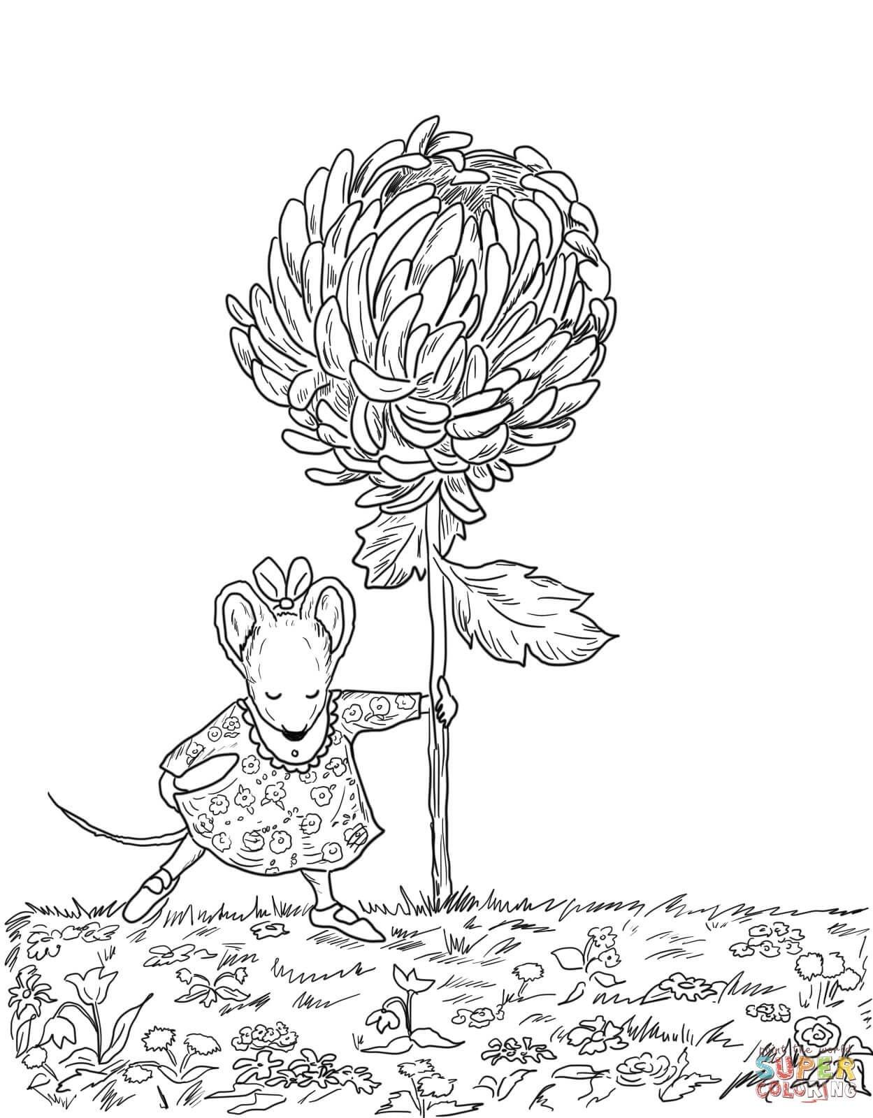 Chrysanthemum Coloring Page | Free Printable Coloring Pages | Just - Chrysanthemum Free Printable Activities