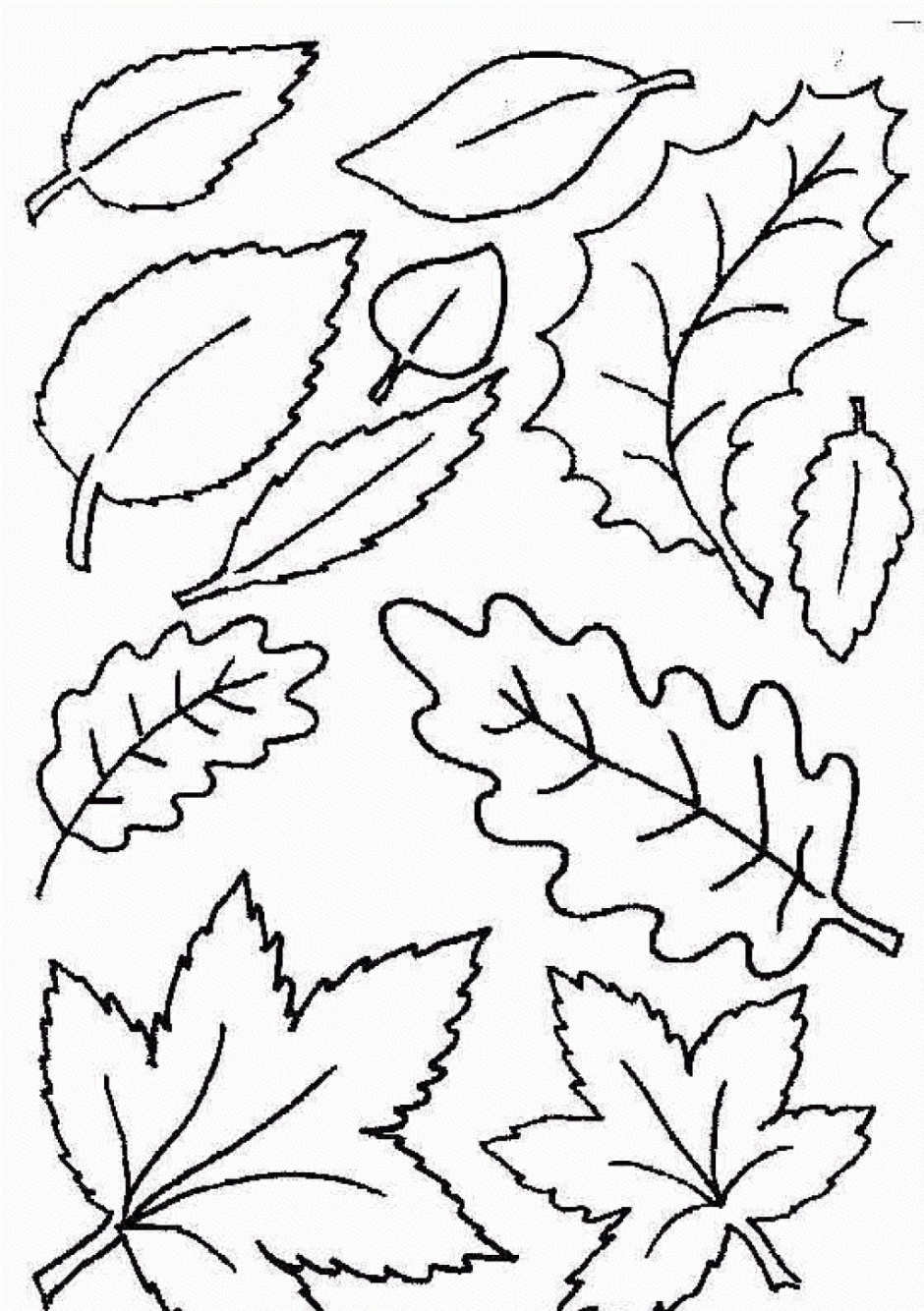 Coloring Ideas : Free Printable Leaf Coloring Pages Fall Leaves And - Fall Leaves Pictures Free Printable
