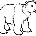 Cute Polar Bear Coloring Pages — Classic Style : Printable Polar   Polar Bear Printable Pictures Free