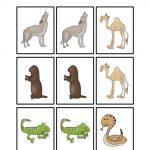 Desert Animal Printables | Desert Activities For Kids | Desert   Free Printable Desert Animals