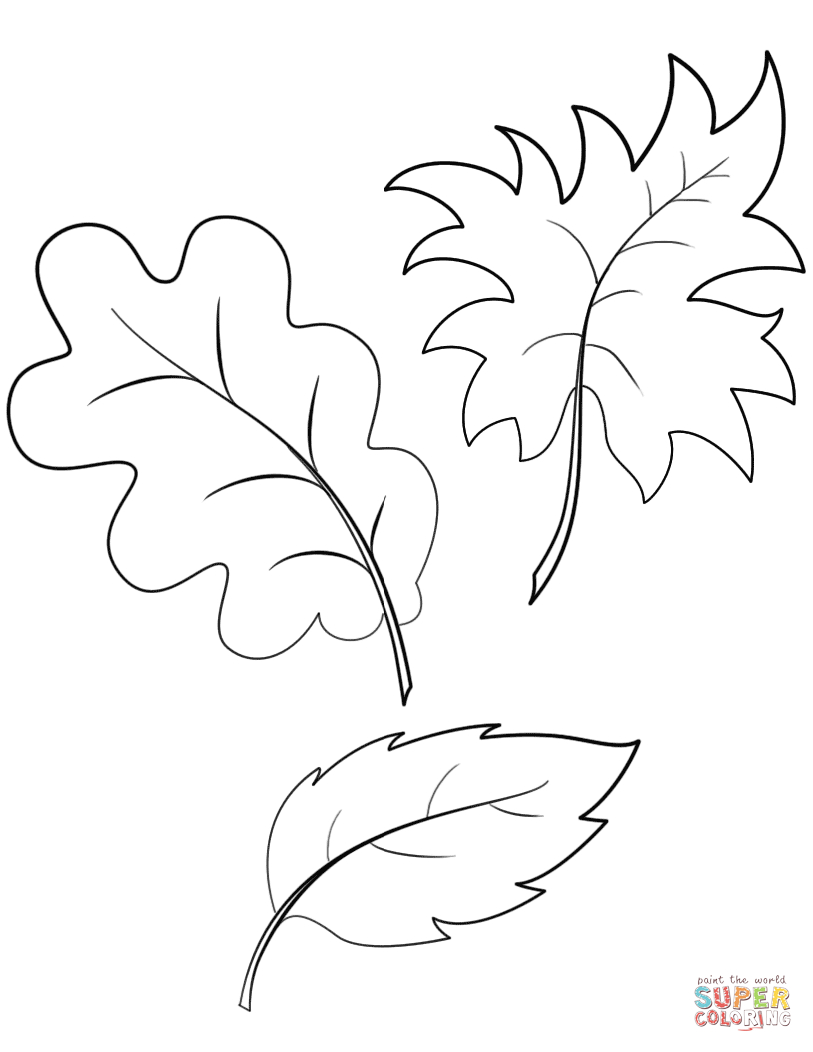 Fall Autumn Leaves Coloring Page | Free Printable Coloring Pages - Fall Leaves Pictures Free Printable