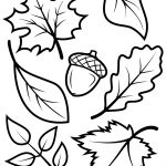 Fall Leaves And Acorn Coloring Page | Free Printable Coloring Pages   Fall Printable Coloring Pages Free
