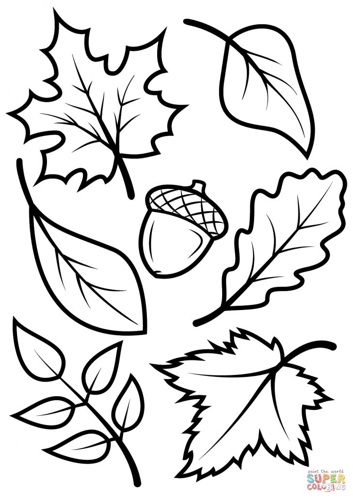 Fall Printable Coloring Pages Free