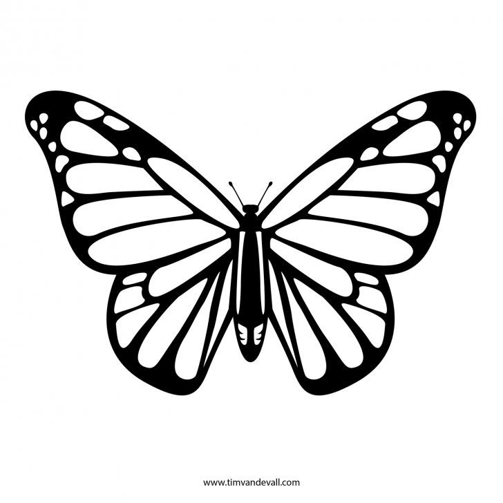 Free Printable Butterfly