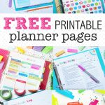 Free Coupons Without Having To Download Anything / Freebies Calendar Psd   Free Printable Coupons Without Downloading Or Registering