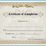 Free Editable Printable Certificate Of Completion #253   Certificate Of Completion Template Free Printable