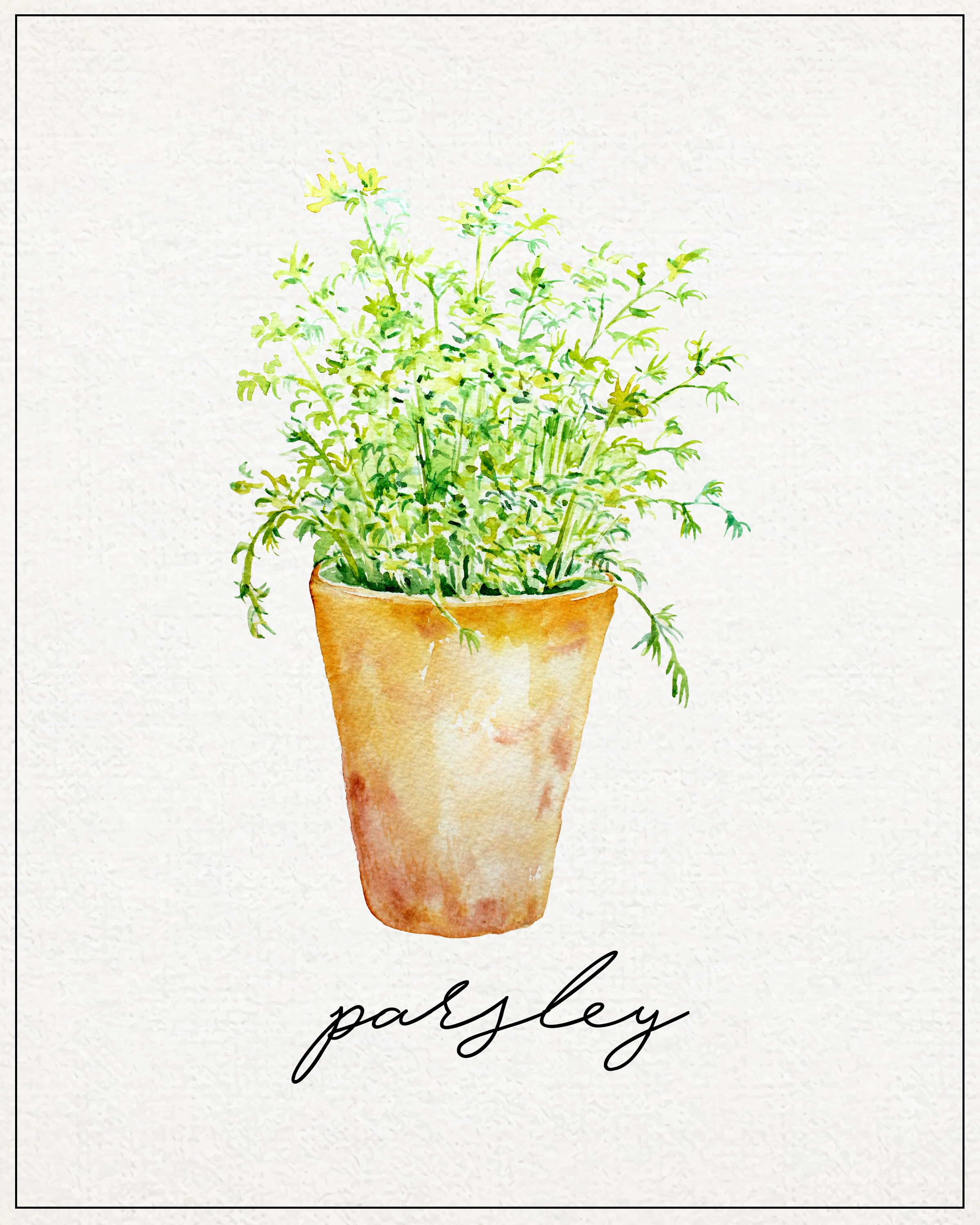Free Kitchen Herb Wall Art Printables | The Cottage Market - Free Printable Pictures Of Herbs