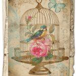 Free Printable Birdcage Art Card – Avalon Rose Design   Free Vintage Printables
