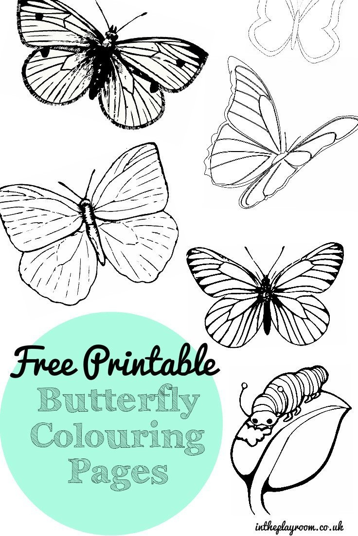 Free Printable Butterfly Colouring Pages - In The Playroom - Free Printable Butterfly Pictures