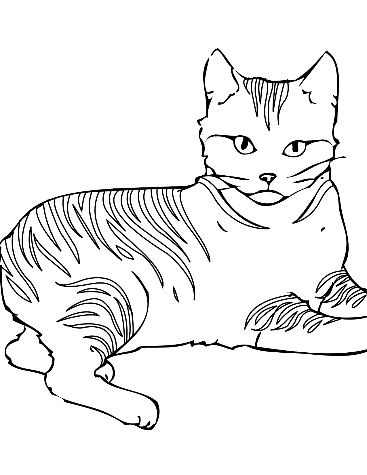 Free Printable Cat Coloring Pages For Kids - Free Printable Cat Coloring Pages