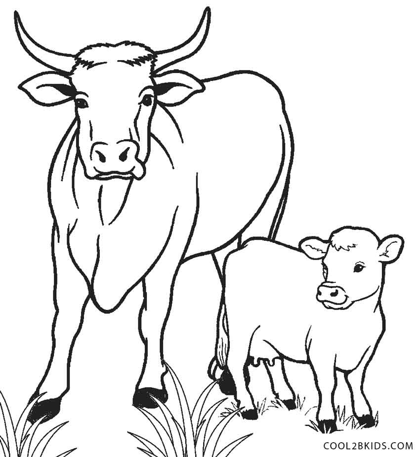 Free Printable Cow Coloring Pages For Kids | Cool2Bkids - Coloring Pages Of Cows Free Printable
