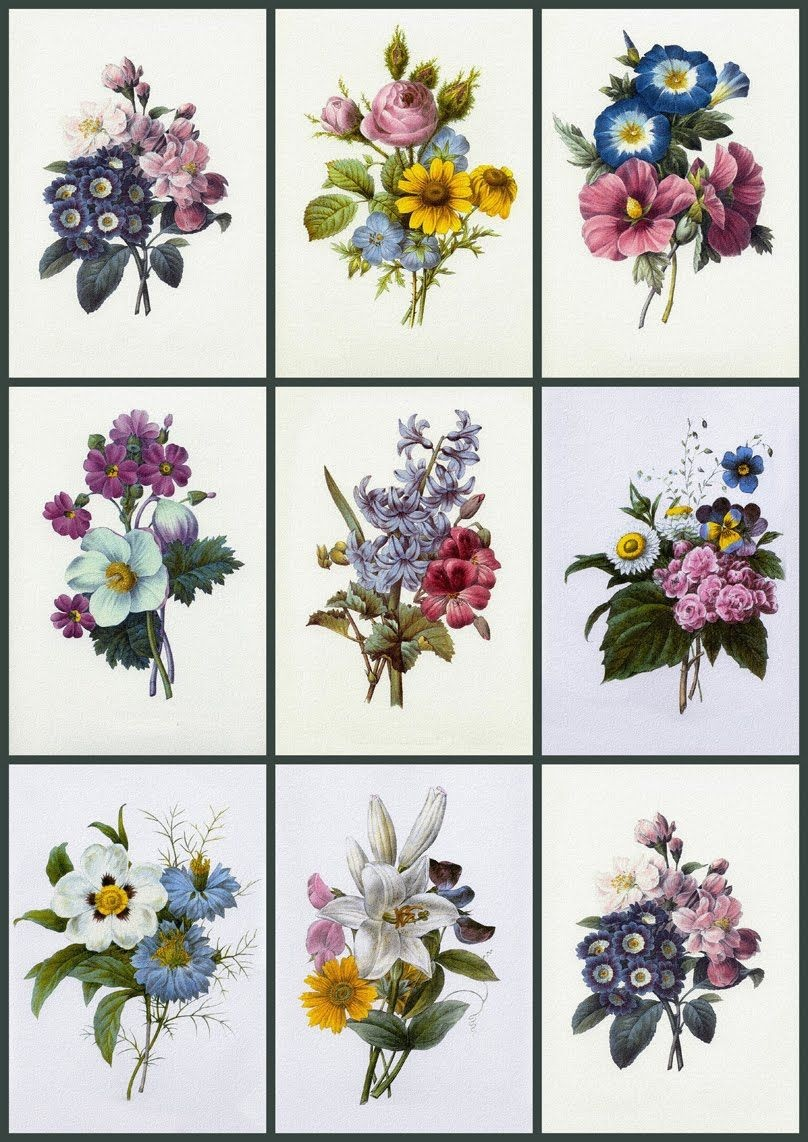 Free Printable Decoupage Papers |  Sizes, Medallions, Card Fronts - Free Printable Decoupage Flowers