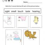 Free Printable Five Senses Worksheet For Kids   Free Printable Worksheets Kindergarten Five Senses