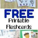 Free Printable Flashcards   Look! We're Learning!   Free Printable Flash Cards