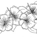 Free Printable Flowers To Color | Presidencycollegekolkata   Free Printable Flower Coloring Pages For Adults