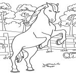 Free Printable Horse Coloring Pages For Kids   Free Printable Horse Coloring Pages