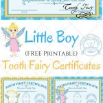 Free Printable Tooth Fairy Certificates | Fabnfree // Freebie Group   Free Tooth Fairy Printables