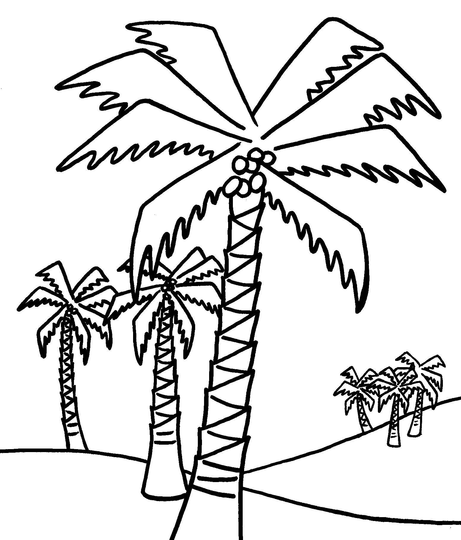 Free Printable Tree Coloring Pages For Kids | Coloring Pages | Tree - Free Printable Palm Tree Template