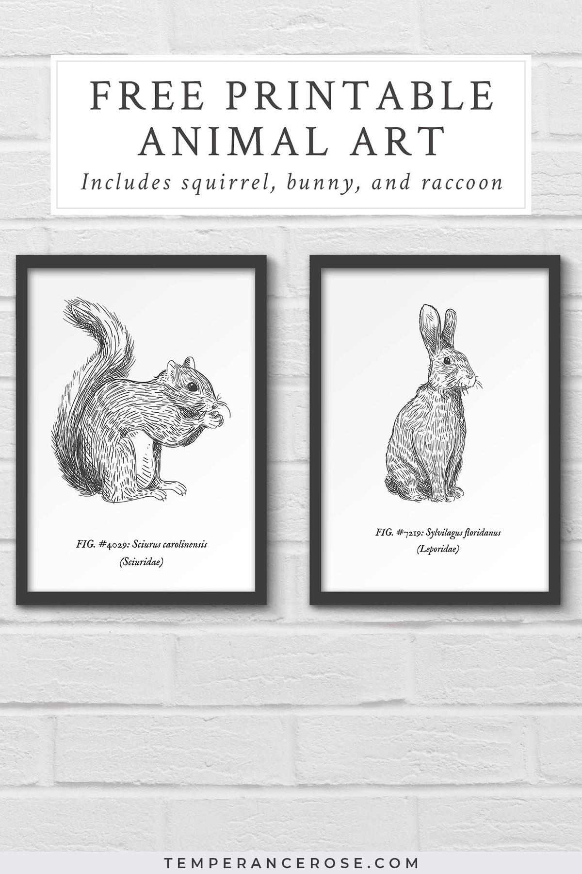 Free Printable Woodland Animal Wall Art - Free Woodland Animal Printables