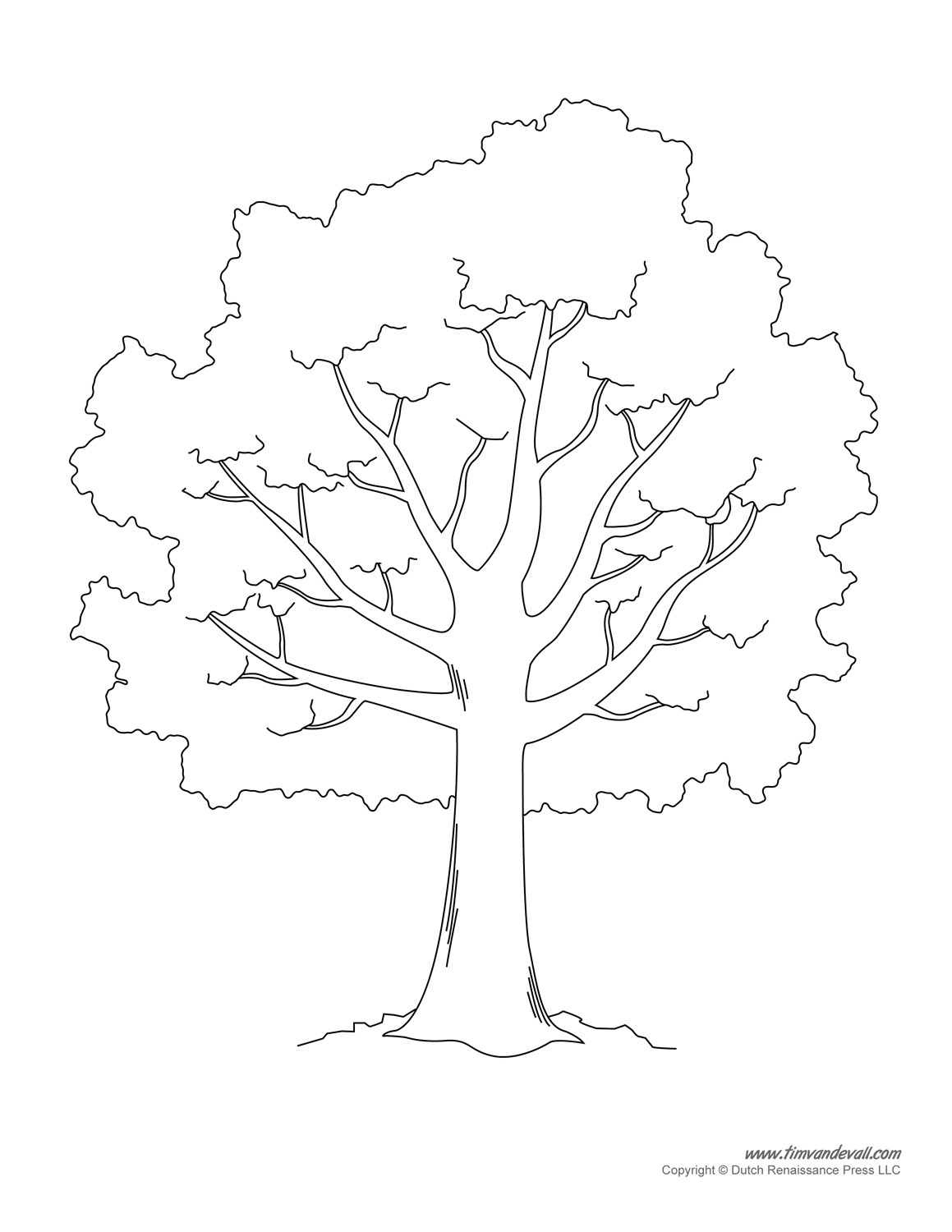 Free Stencil Of A Tree Outline, Download Free Clip Art, Free Clip - Free Printable Palm Tree Template