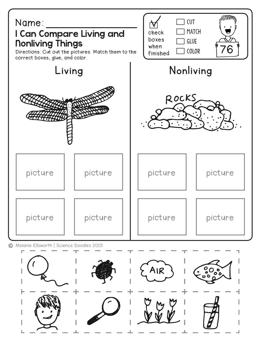 Freebie! No-Prep Kindergarten Science Doodle Printables   T E A C H - Free Printable Worksheets For Kids Science