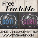 Gender Reveal Free Printables | Ella Claire | Gender Reveal, Gender   Free Gender Reveal Printables