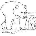 Grizzly Bear Family Coloring Page | Free Printable Coloring Pages   Polar Bear Printable Pictures Free