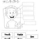 Image Result For 5 Senses Preschool Printables | School Ideas   Free Printable Worksheets Kindergarten Five Senses