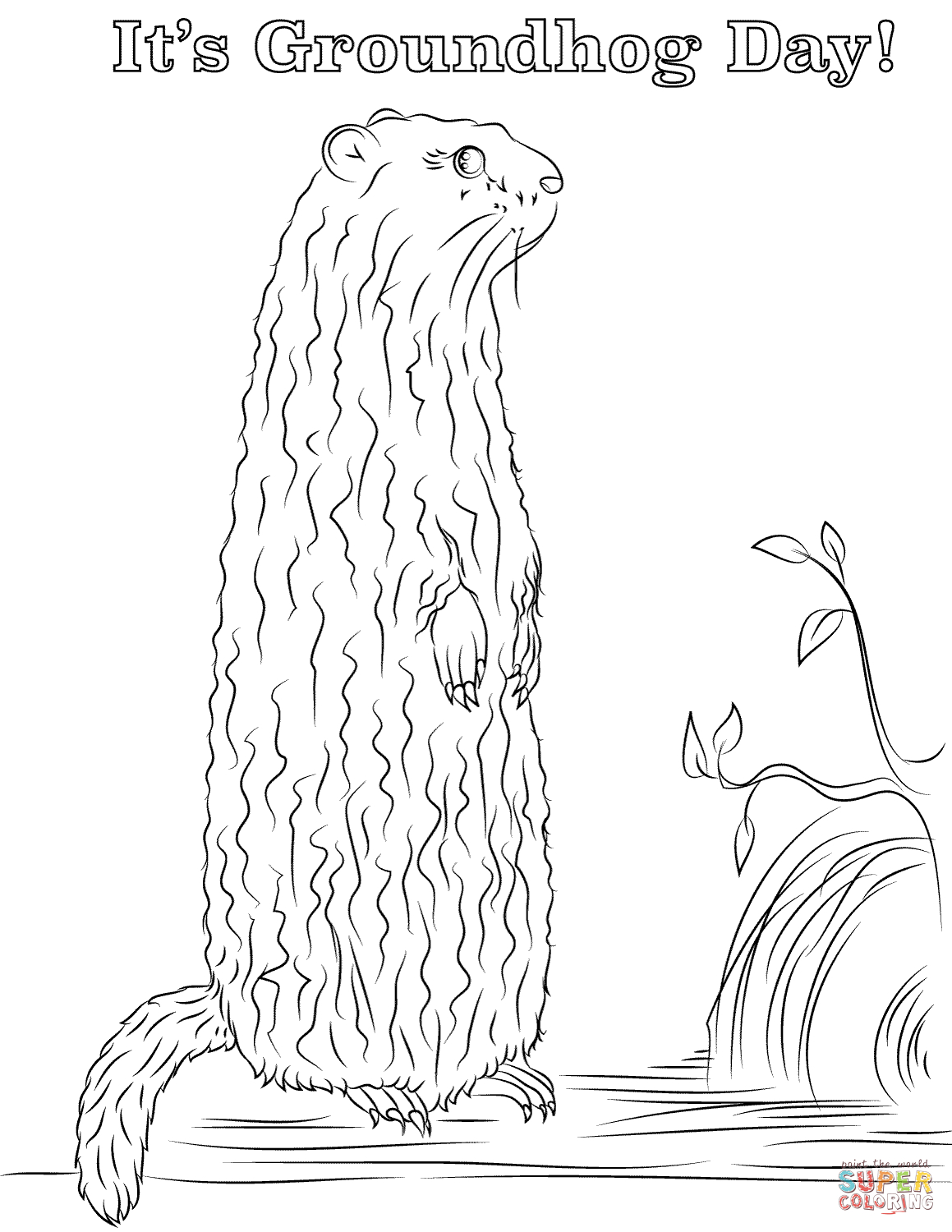 It's Groundhog Day! Coloring Page | Free Printable Coloring Pages - Groundhog Day Coloring Pages Free Printable