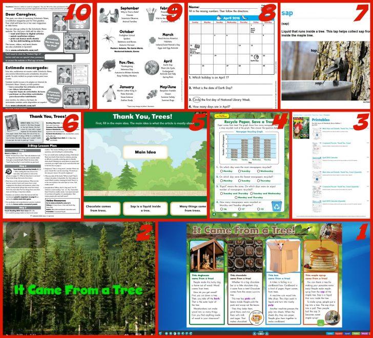 Scholastic Free Printables