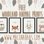 Malena Haas: Free Woodland Animal Printables   Free Woodland Animal Printables