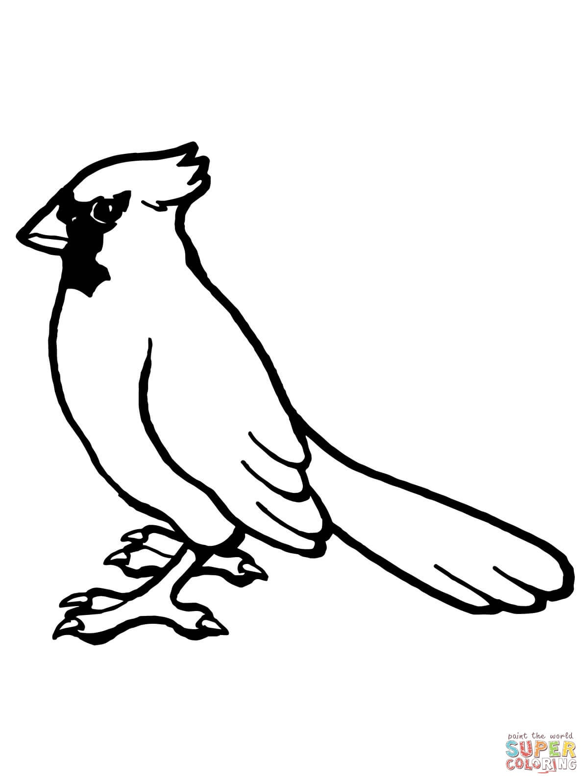 Nothern Cardinal Bird Coloring Page | Free Printable Coloring Pages - Free Printable Pictures Of Cardinals