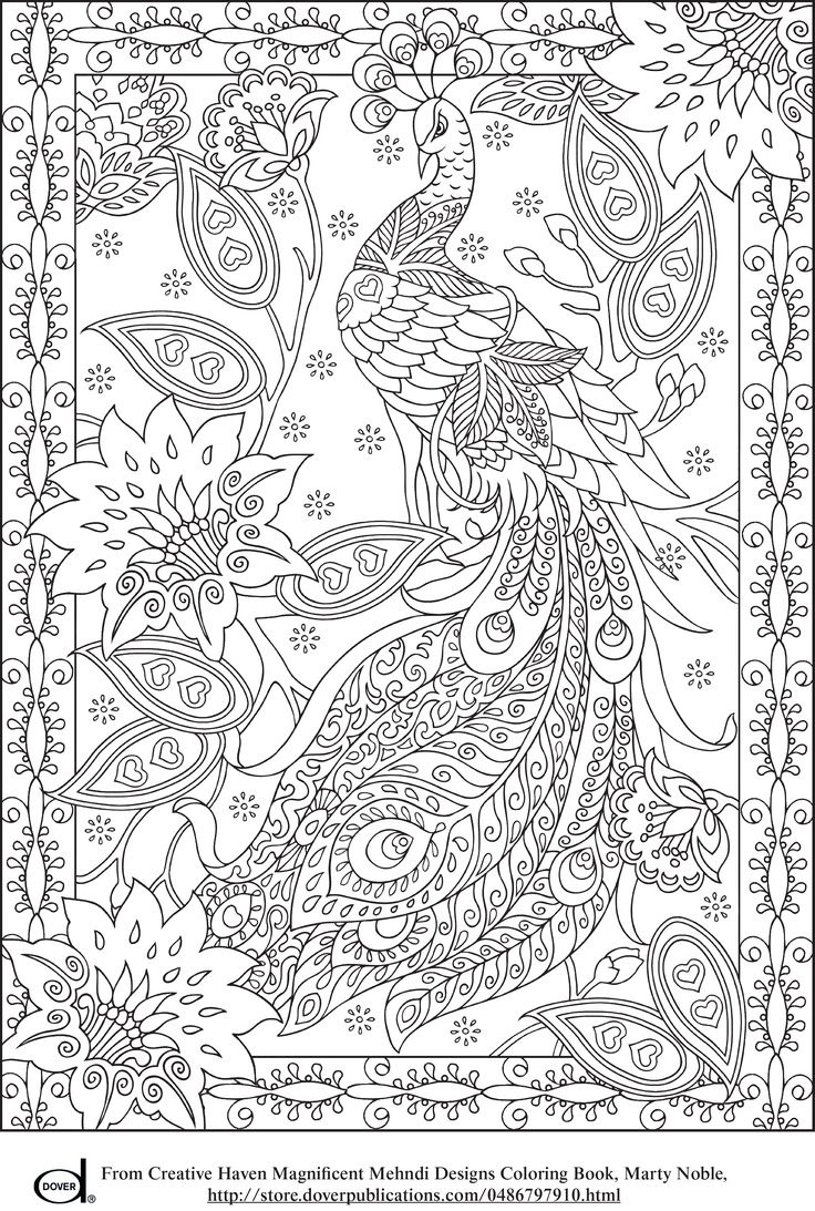 Peacock Feather Coloring Pages Colouring Adult Detailed Advanced - Free Printable Coloring Designs For Adults