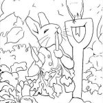 Peter Rabbit Coloring Pages To Download And Print For Free   Free Printable Peter Rabbit Coloring Pages