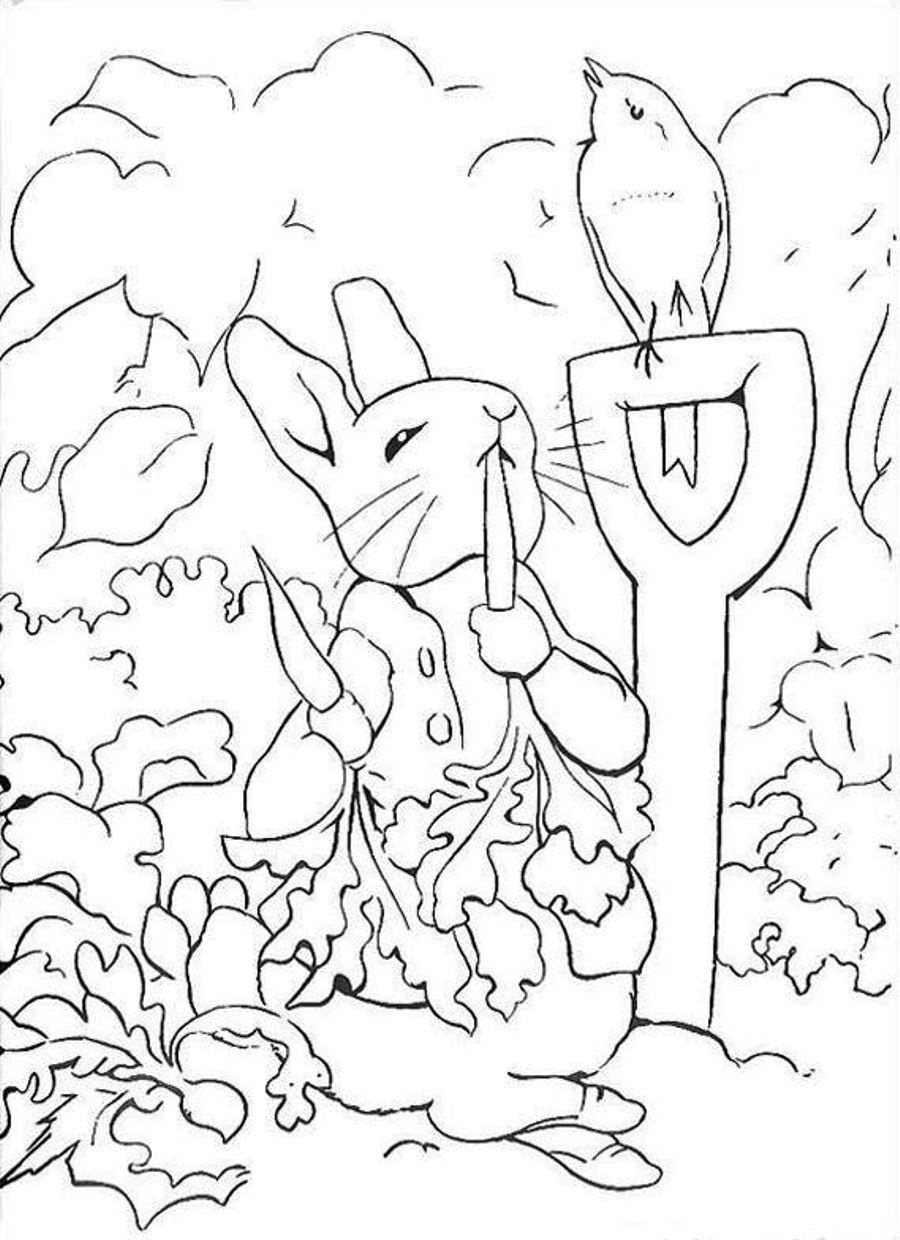 Peter Rabbit Coloring Pages To Download And Print For Free - Free Printable Peter Rabbit Coloring Pages