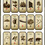 Pinlisa Allenmh On Tarot | Tarot, Tarot Cards For Beginners   Printable Tarot Cards Pdf Free