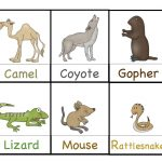 Preschool Printables: Desert Animals Printable | Themed Lesson Plan   Free Printable Desert Animals