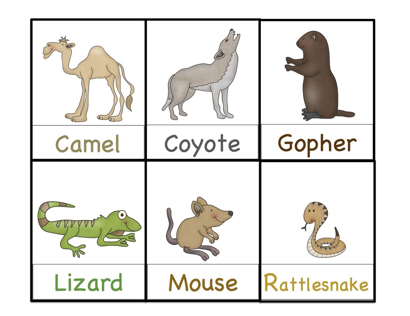 Preschool Printables: Desert Animals Printable | Themed Lesson Plan - Free Printable Desert Animals
