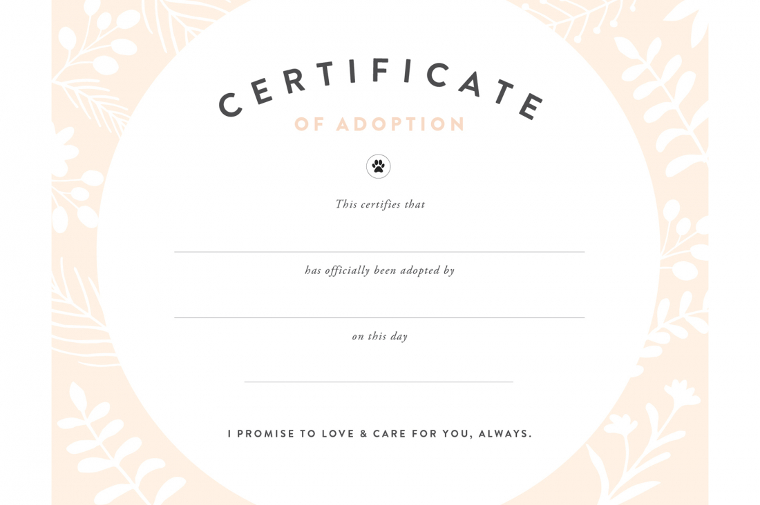 Pretty Fluffy - Free Printable Birth Certificates For Puppies