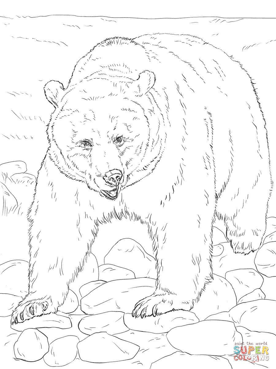 Realistic Animal Coloring Pages - Free Printable Wild Animals - Free Printable Wild Animal Coloring Pages