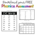 Sarah's First Grade Snippets: Phonics Assessments   Free Printable Phonics Assessments