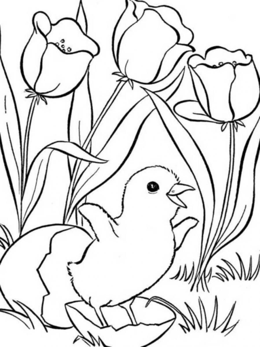 Spring Coloring Pages, Printable Spring Coloring Pages, Free Spring - Free Printable Spring Coloring Pages For Adults