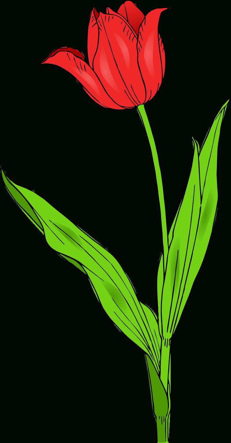 Spring Flowers Clip Art Free Printable 3 - Cliparting - Free Printable Clipart Of Flowers