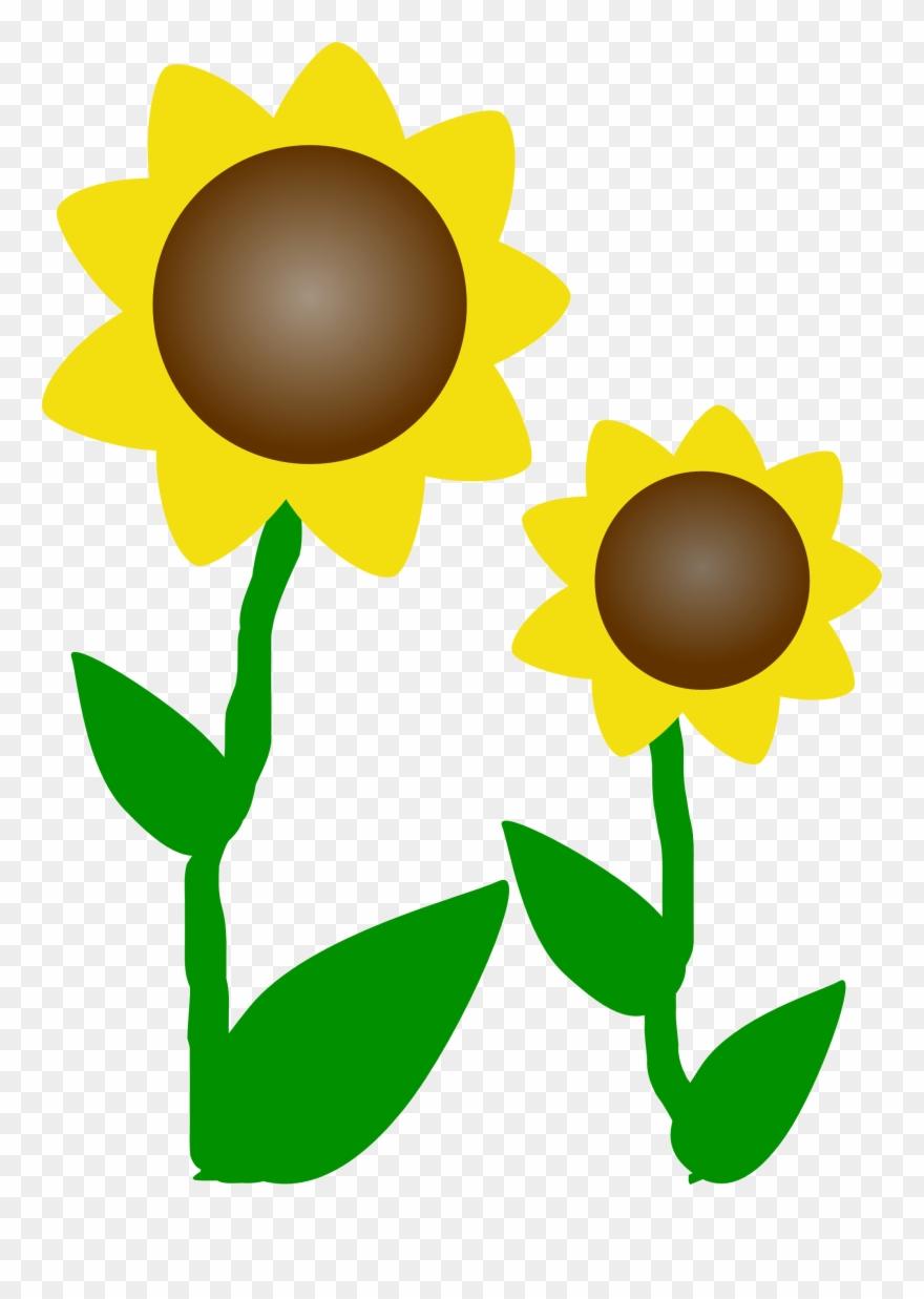 Sunflower Clip Art Free Printable Clipart Panda Free - Sunflower - Free Printable Clipart Of Flowers