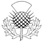 The Thistle Of Scotland Coloring Page | Free Printable Coloring Pages   Free Printable Scottish Flag