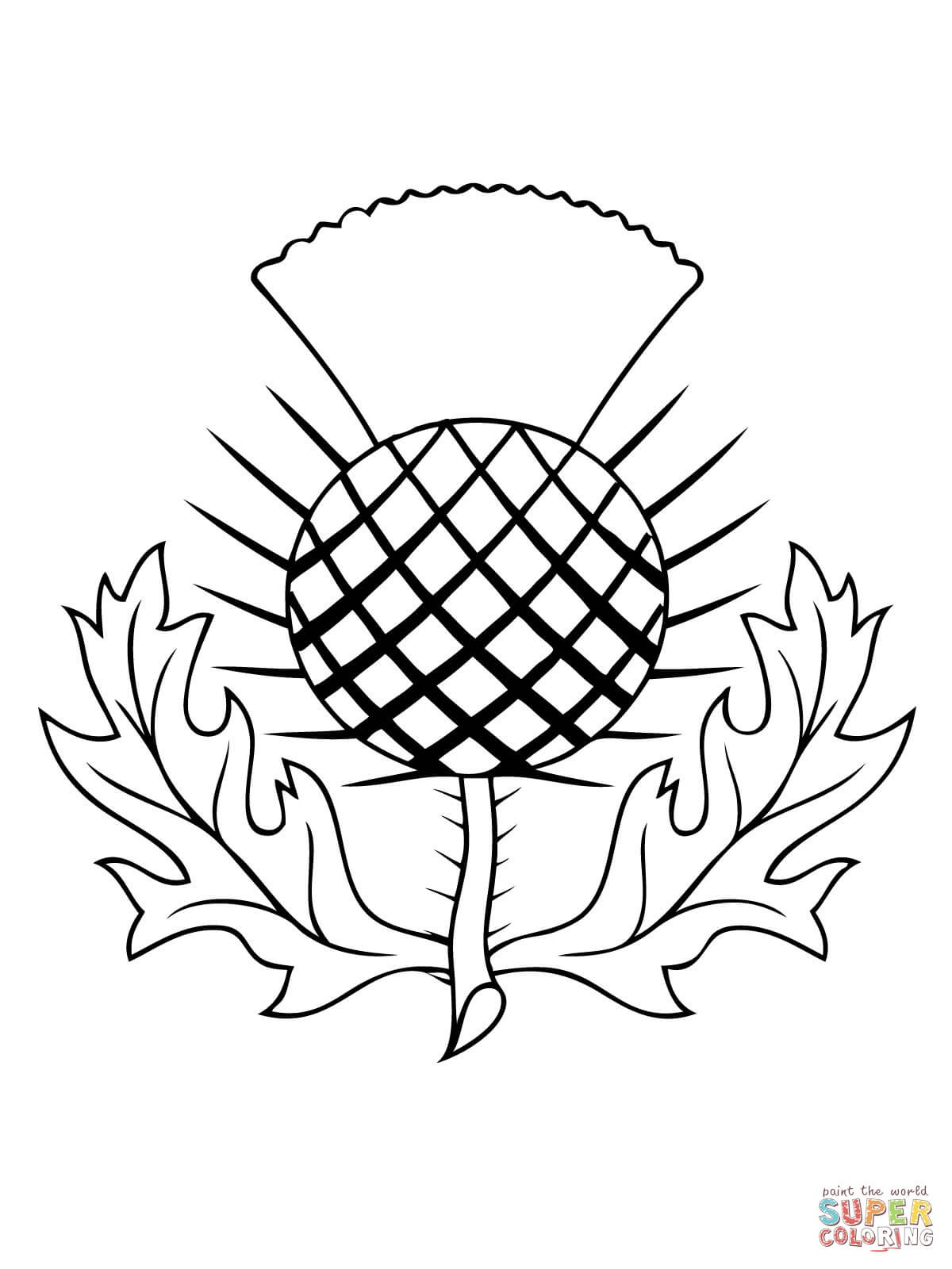 The Thistle Of Scotland Coloring Page | Free Printable Coloring Pages - Free Printable Scottish Flag