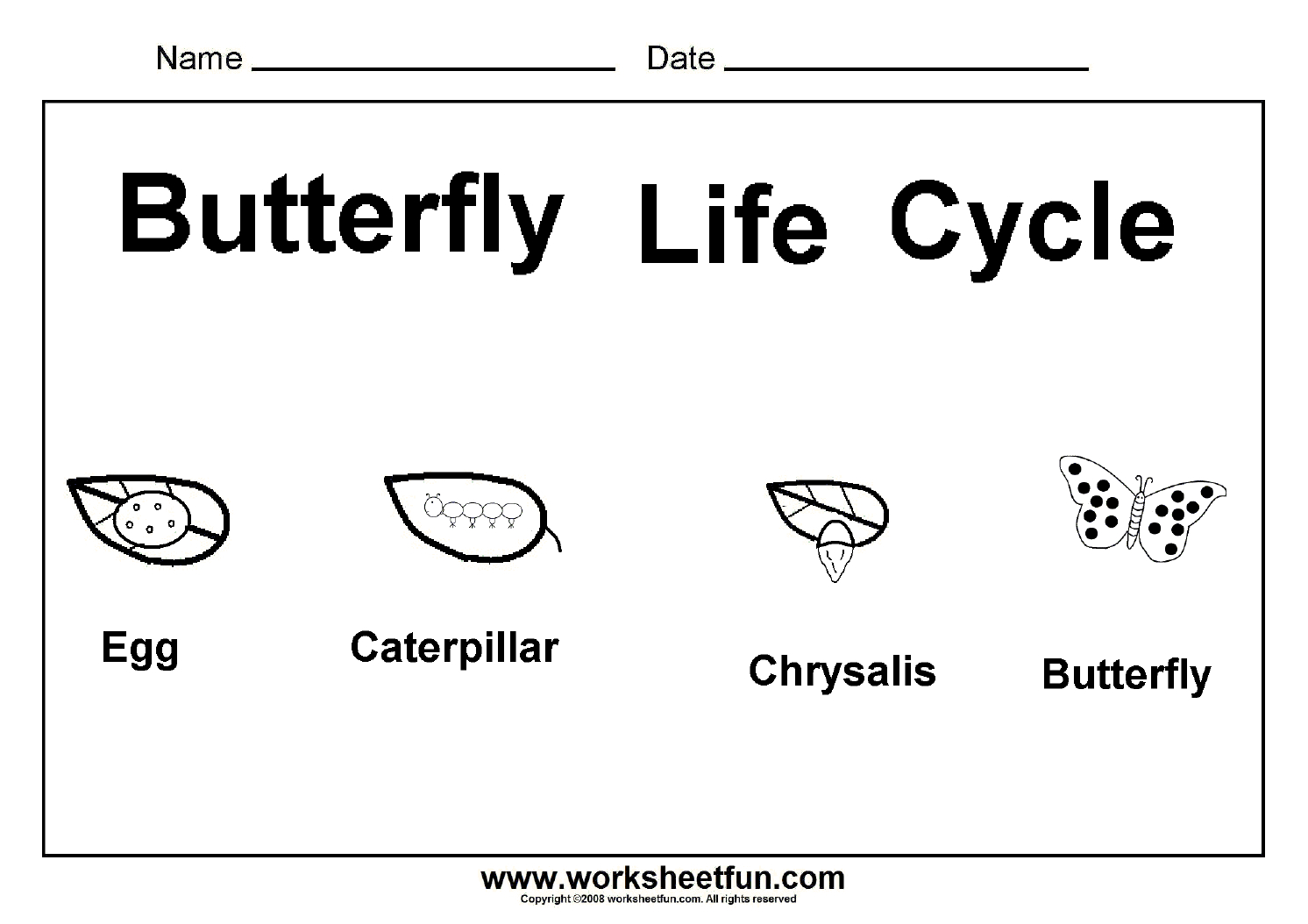 Worksheet : Butterfly Life Cycle One Free Printable Science - Free Printable Worksheets For Kids Science